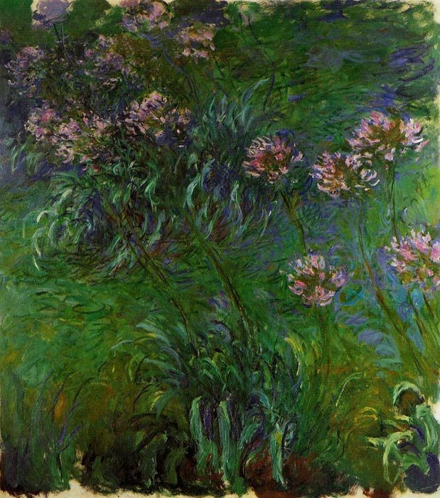 Oil Painting Reproduction of Monet- Agapanathus