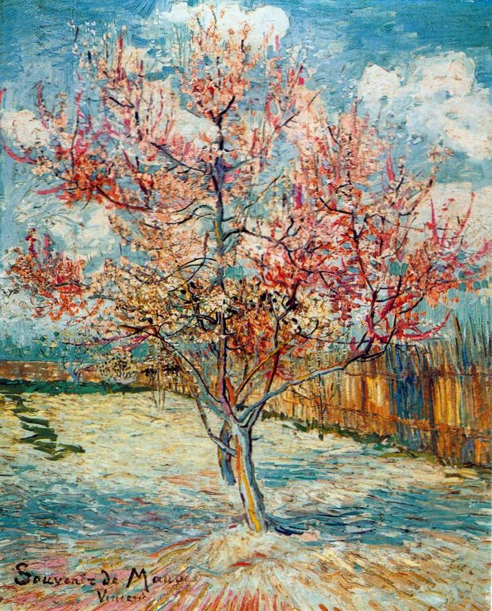 Peach Tree in Blossom painting