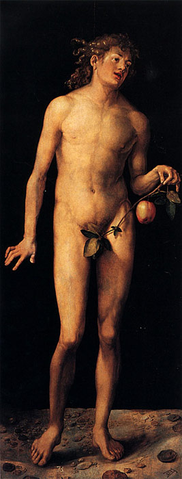 Durer Oil Painting Reproductions - Adam