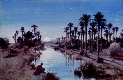 An Oasis At Night