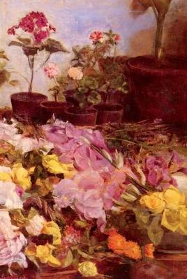 Still Life Flower Pots And Cut Flowers