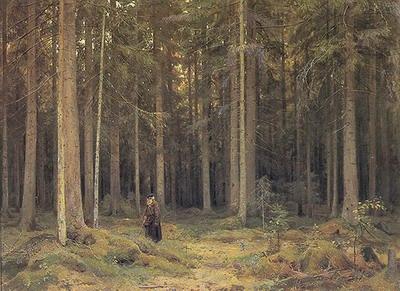 The Forest of Countess Mordvinova