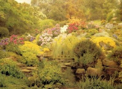 A Watergarden
