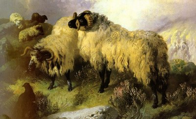 Highland Scene With Sheep And Grouse