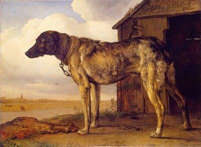 The wolf hound
