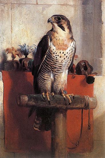 Falcon, Edwin Landseer