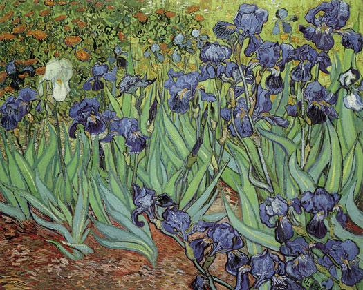 Irises, Vincent van Gogh