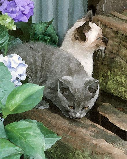 Kittens, Joyce Gibson, canvas