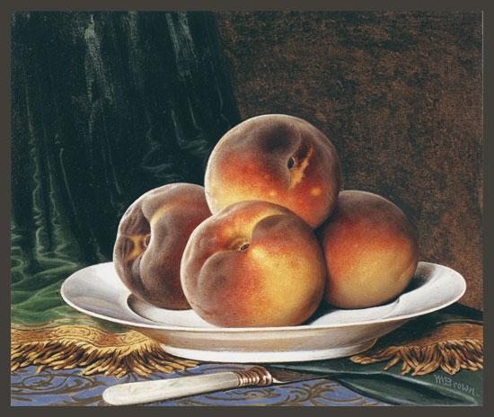 Peaches on a White Plate