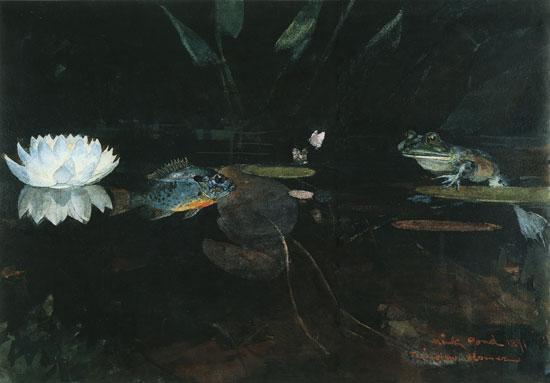The Mink Pond, homer
