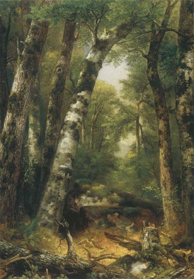 Woodland Glen, Asher Brown Durand