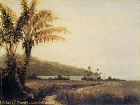 Tropical landscape, St. Thomas, Antilles