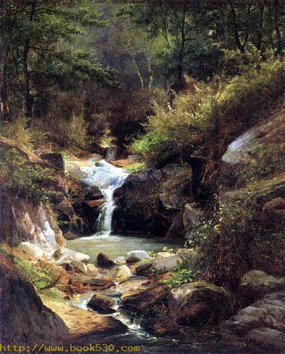 Forest landscape with mountain stream