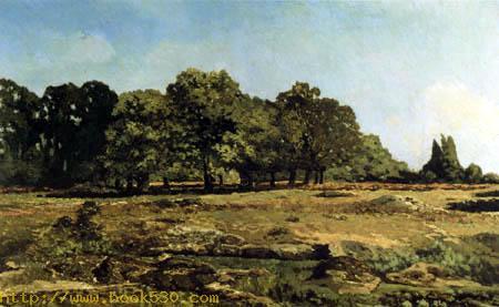 Wooded landscape, Fontainebleau