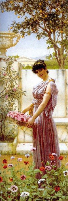 The Flowers of Venus
