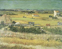 Harvest at La Crau Oil Painting