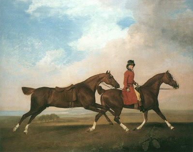 Two Saddle Horses Oil Painting