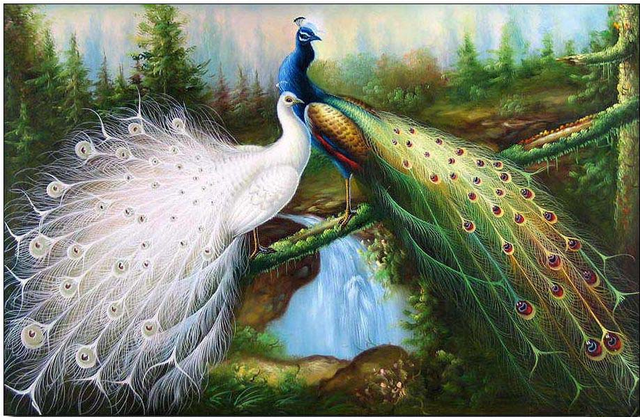 Animal oil painting bird oil painting majestic peacocks 2 for Animal oil paintings