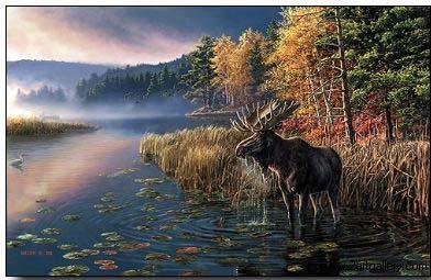 Animal oil painting