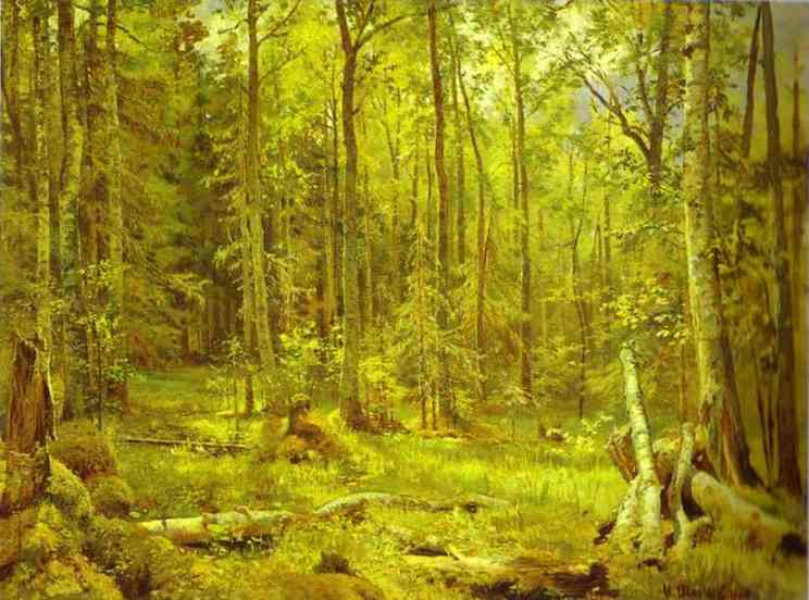 Oil painting:Mixed Forest. Shmetsk Near Narva. 1888