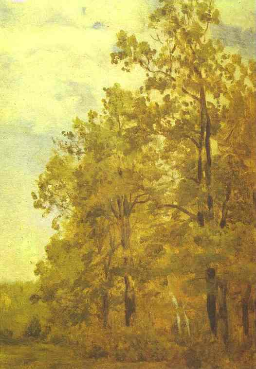 Oil painting:Edge of a Forest. Study. Early 1880