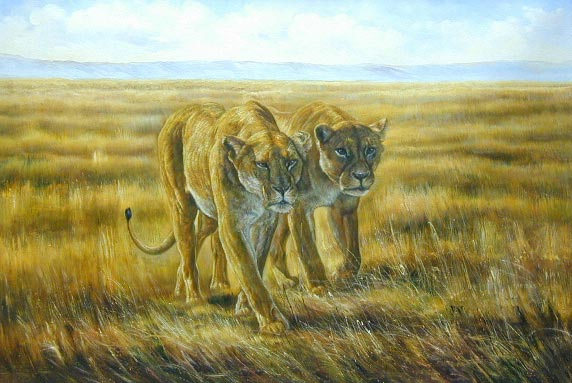 Oil painting for sale:lion-004