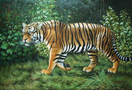 Oil painting for sale:tiger-009