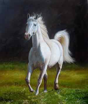 Oil painting for sale:horses-031