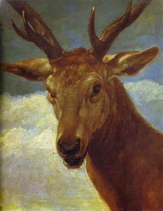 Oil painting:Head of a Stag. 1626