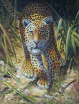 Oil painting for sale:tiger-002