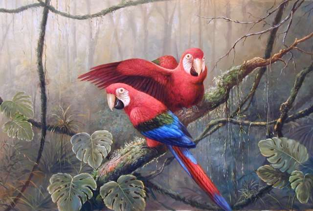 Oil painting for sale:birds-023