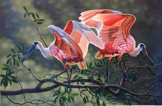 Oil painting for sale:birds-011