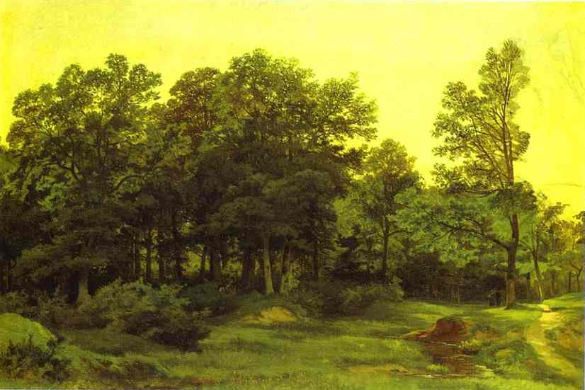 Oil painting:Deciduous Forest.