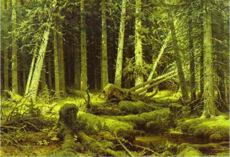 Oil painting:Wind-Fallen Trees. 1888