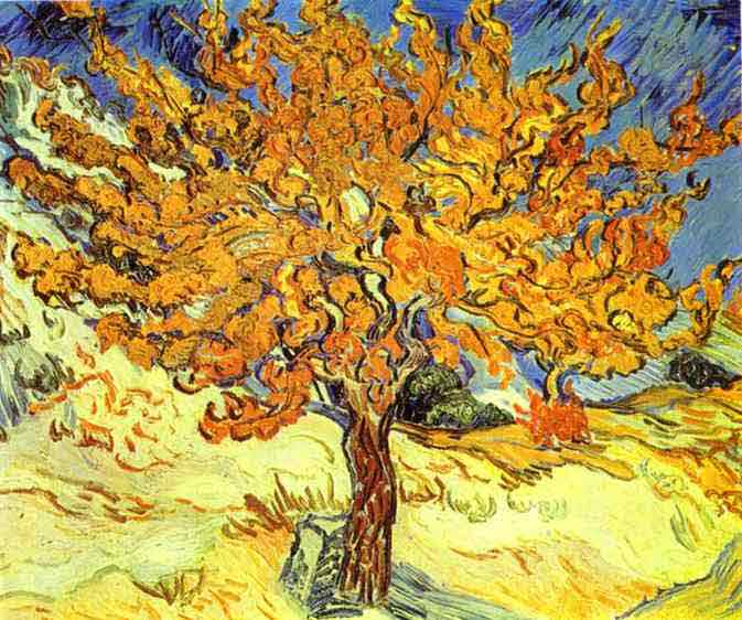 Mulberry Tree. October 1889