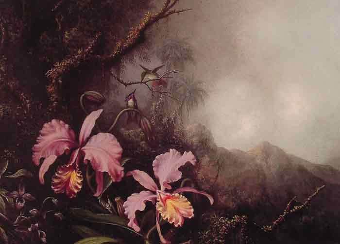 Oil painting for sale:Two Orchids in a Mountain Landscape, c.1870