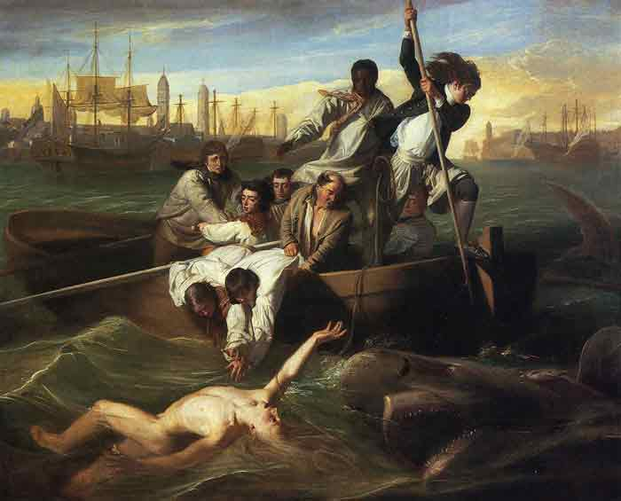 Oil painting for sale:Watson and the Shark, 1778