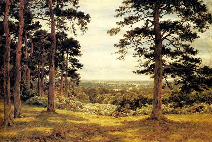 Oil painting for sale:A Peep Through The Pines, 1914