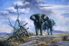 Oil painting for sale:elephant-002