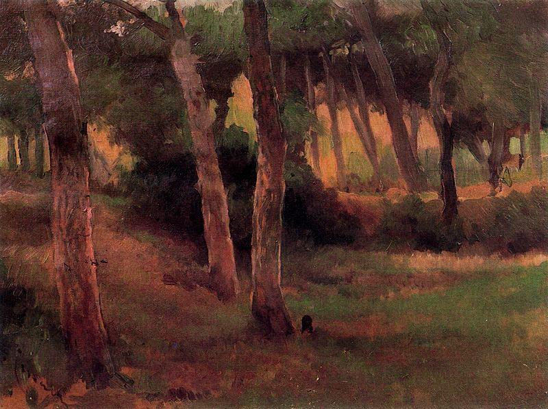 Landscape (b)