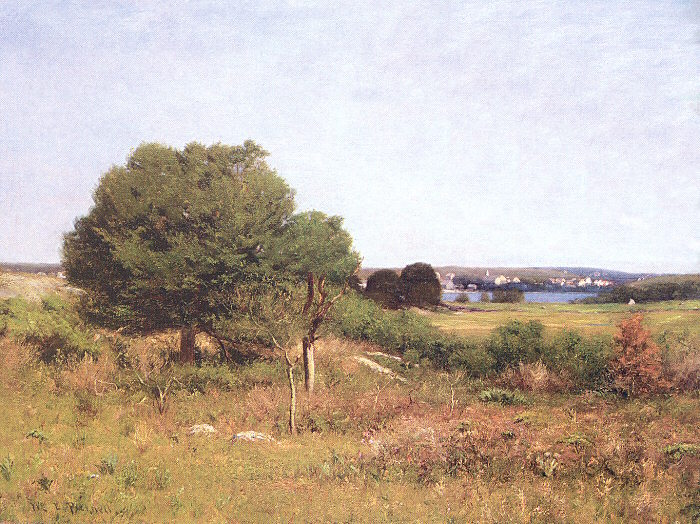 View from a Meadow