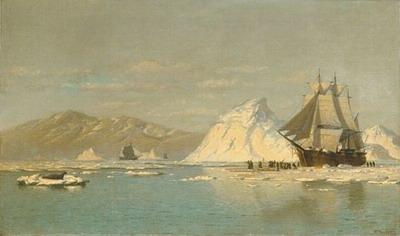 Off Greenland-whaler seeking open water