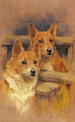 Two Corgies