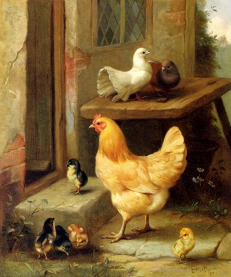 A Hen, Chicks And Pigeons