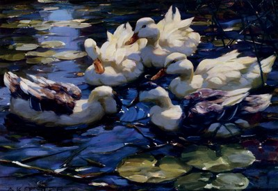 Five Ducks In A Pond