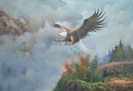 birds-025