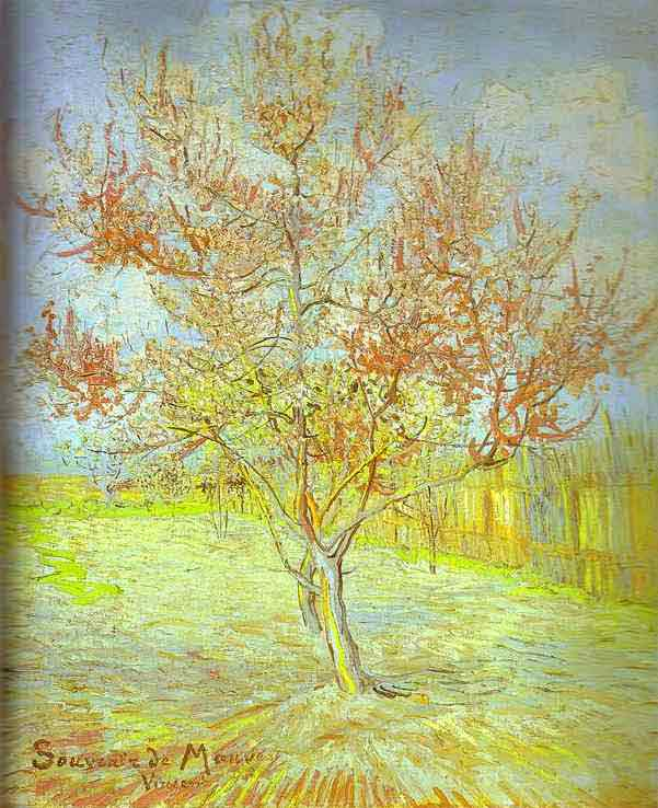 Peach Tree in Bloom. (In memory of Mauve). March 1888