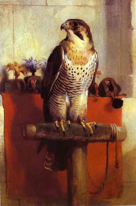 Falcon. 1837