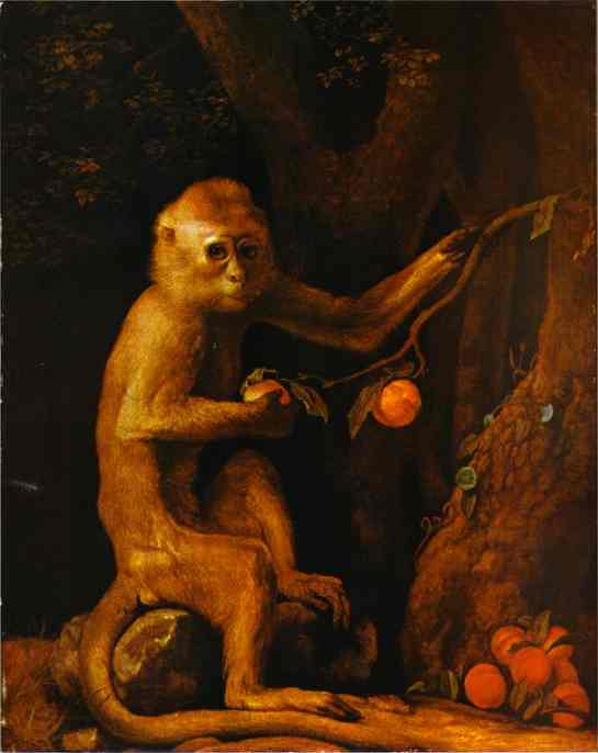 Oil painting:Green Monkey. 1798