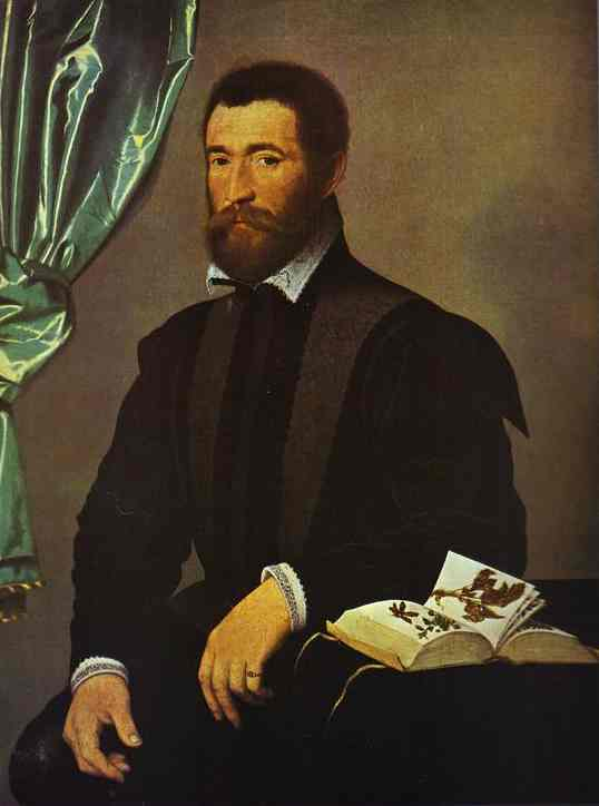 Oil painting:Portrait of Apothecary Pierre Quthe. c. 1562